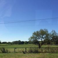 Austin Trip, Day 3 / Gonzales Day Trip