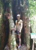 This tree was hugging me!